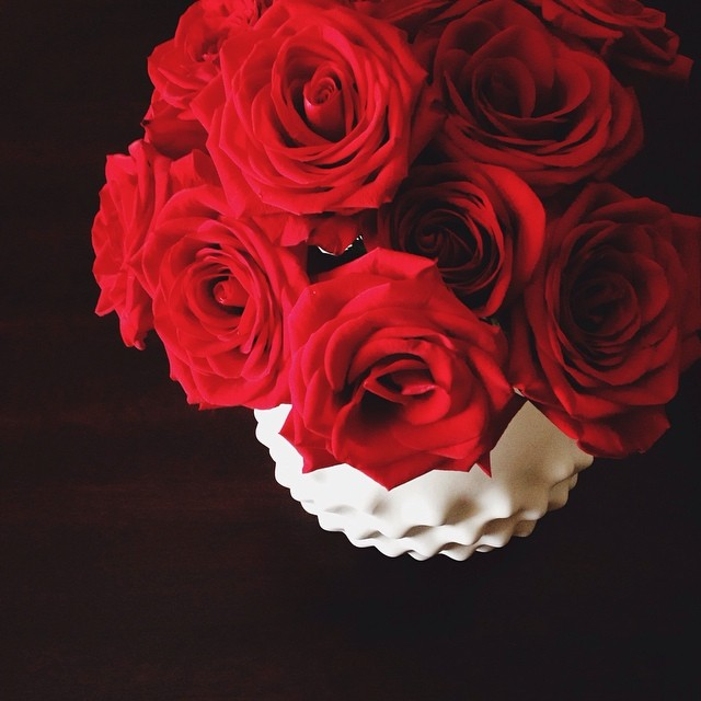 irinabond_instagram_red_roses_romantic_cb2_vase