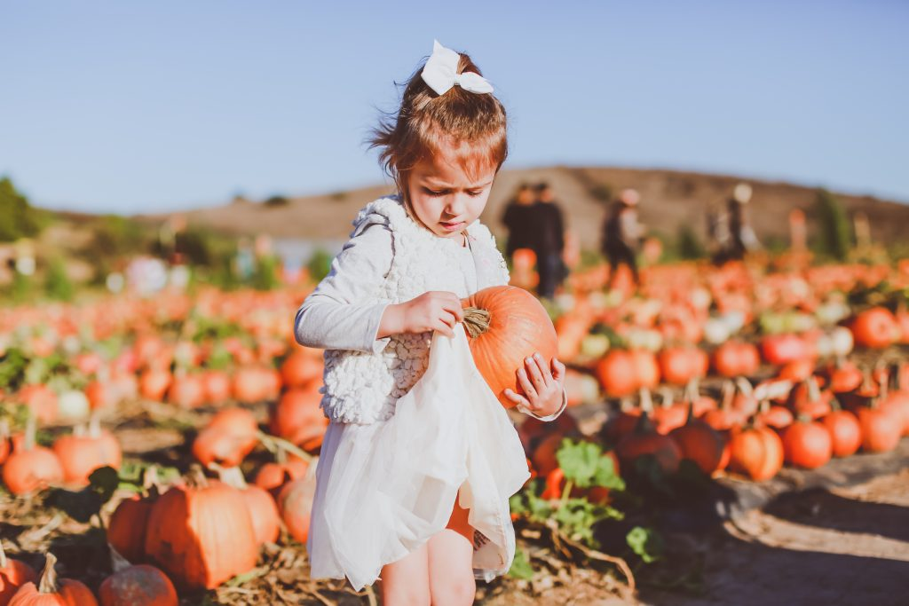 Our Pumpkin Patch Tradition | BondGirlGlam.com